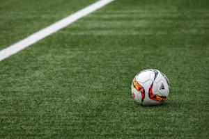 грунт для спортивных газонов Спорт